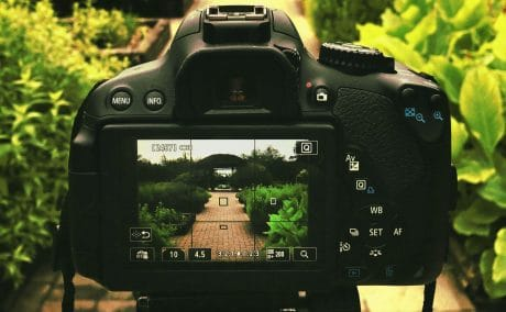 Camera settings for NEF or JPEG format