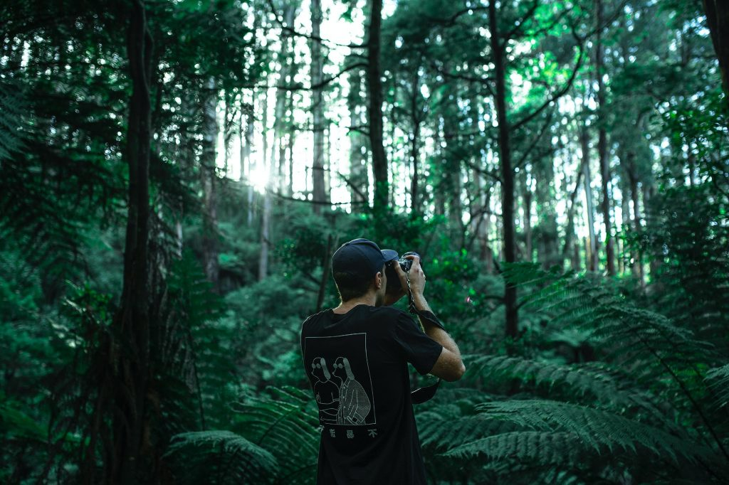 Photographer in a jungle - Best cameras for wildlife Photography