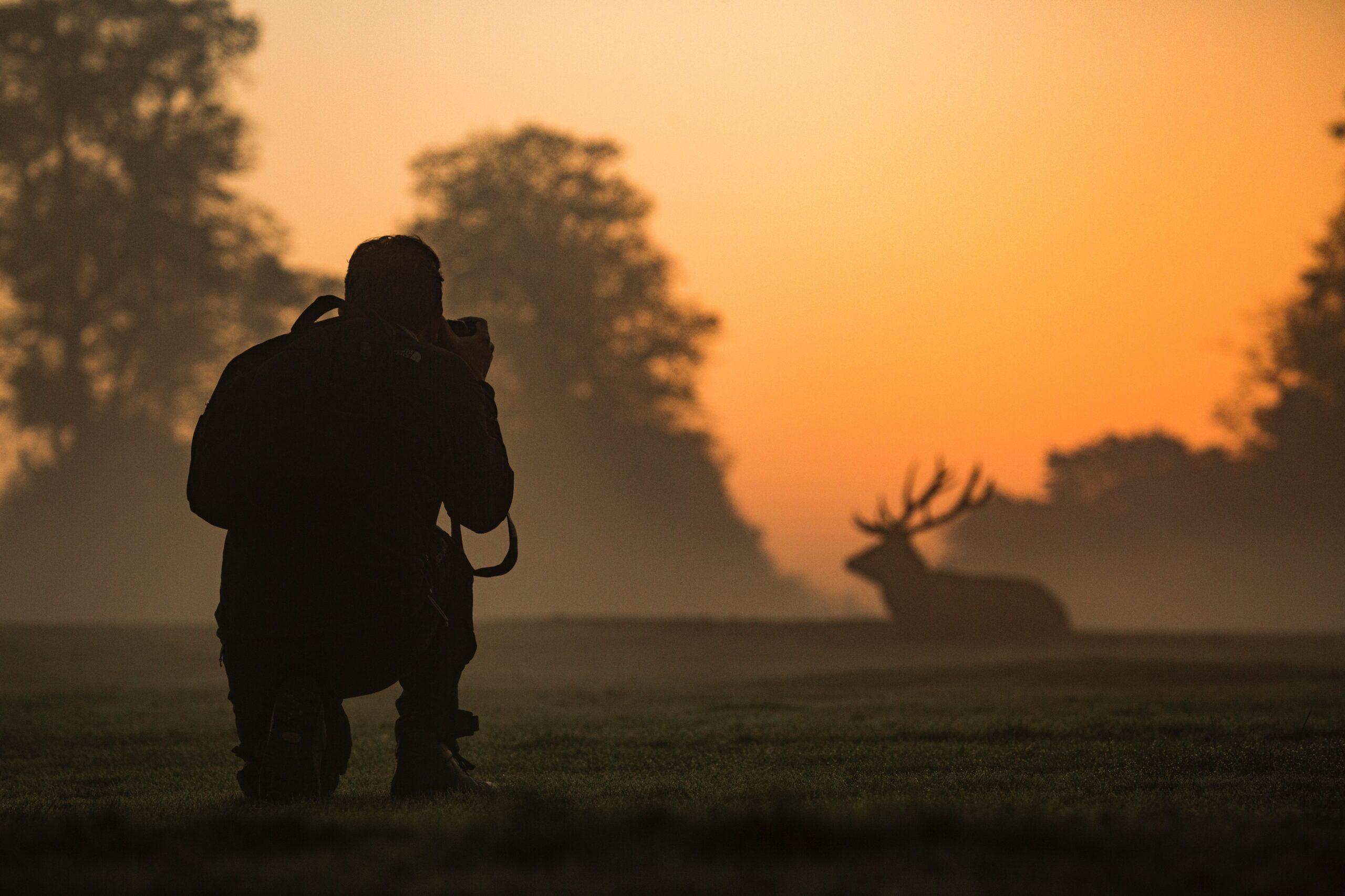 Photographer using Wildlife photography equipment
